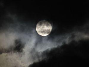 Luna023
